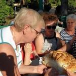 z20615148Q,Dozynki-w-ogrodzie-dzialkowym-im--Tadeusza-Koscius